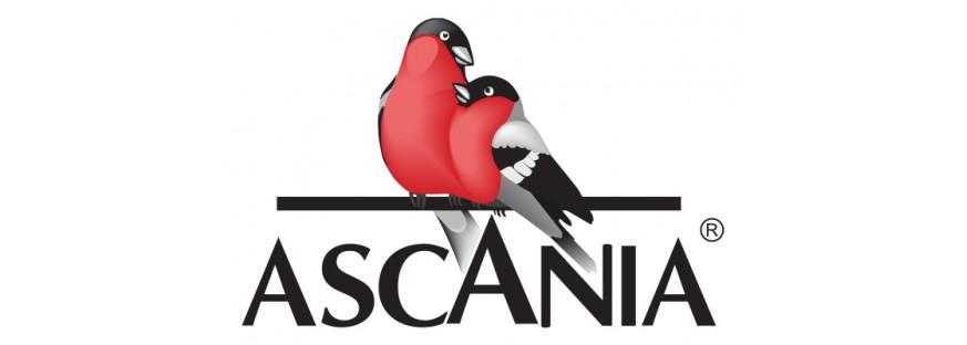 Асканиа ( Лимонады )